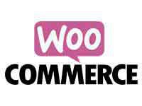 woocommerce-en-sevilla-2